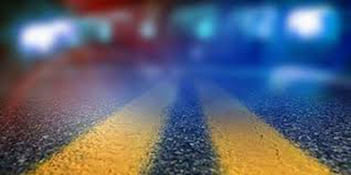 Pedestrian struck on Plank Road; injuries critical