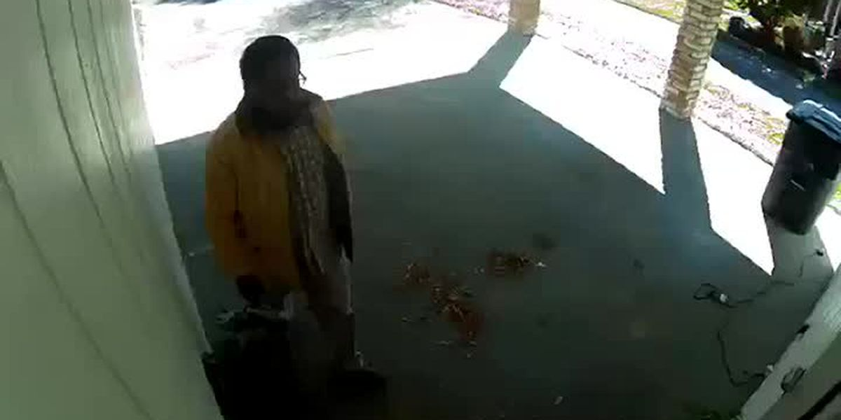 Viewer submitted video of alleged package theft