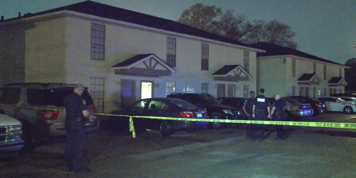 Man shot, killed trying to stop alleged carjacker