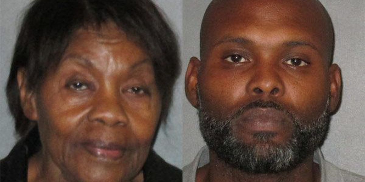 81-year-old woman, son face 40 felony counts of filing false tax returns