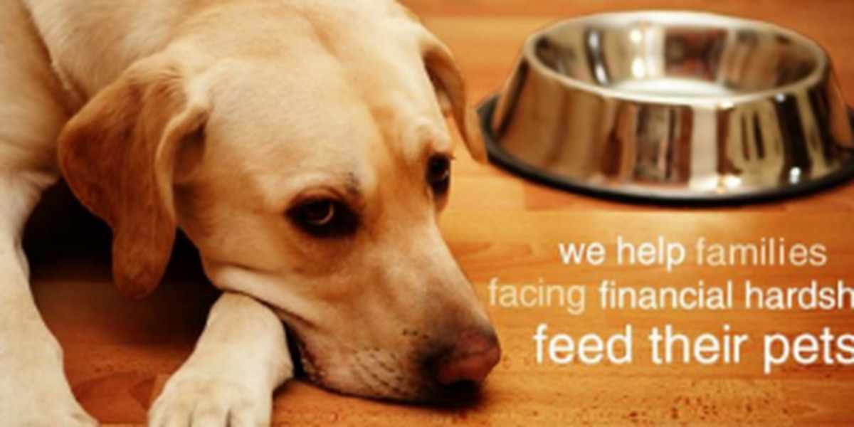 Pet Owners Experiencing Hardship Due To Covid 19 Receive Free Pet Food