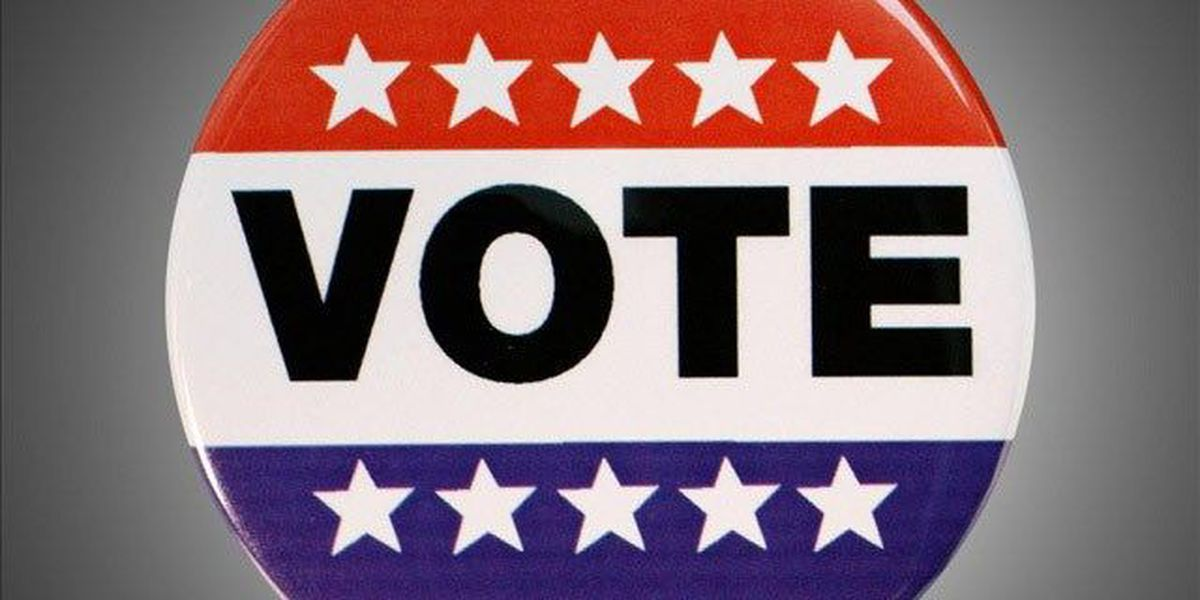 Voter registration event to take place at multiple BR area libraries