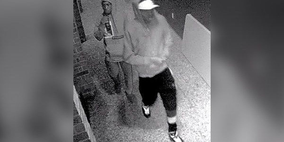 Detectives release surveillance pics of pair that stole electronics from school