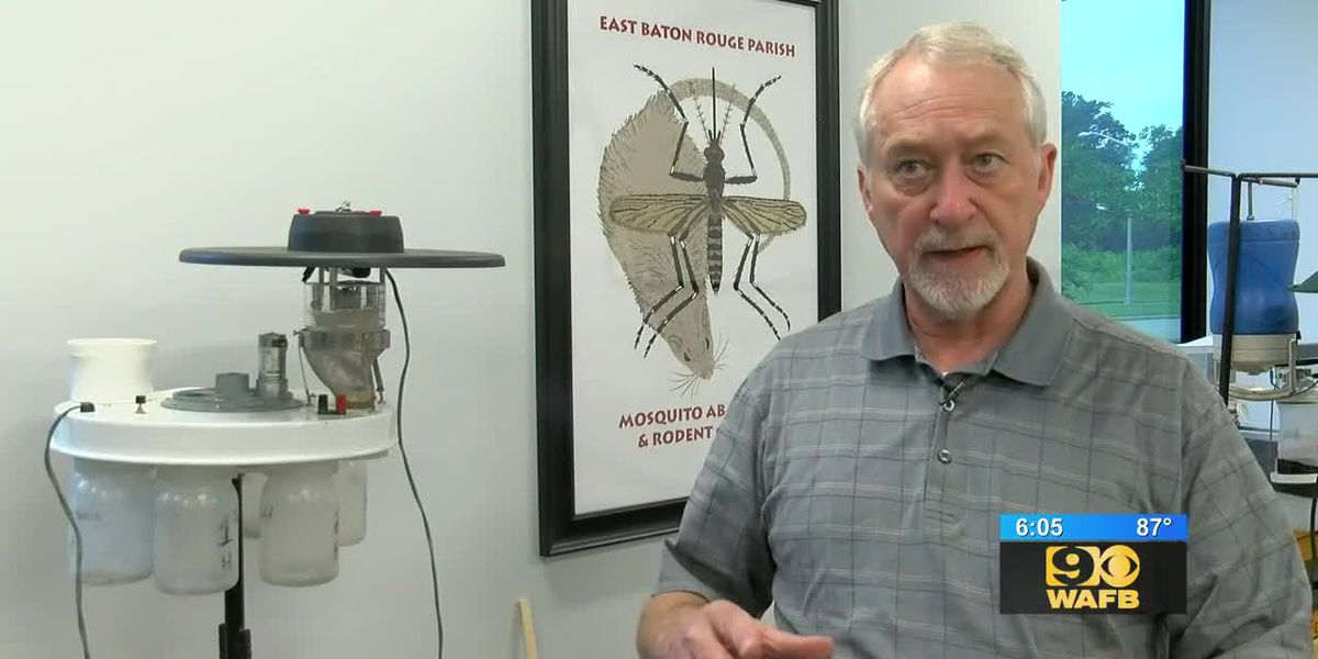 Mosquito abatement officials offer tips to keep from getting bitten this summer