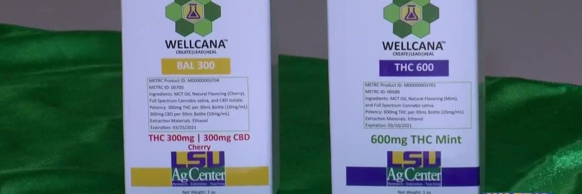 Big changes coming to Louisiana's medical marijuana program that could benefit patients