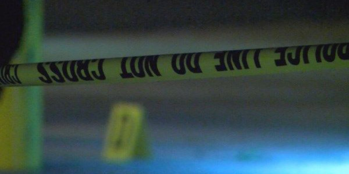 EBRSO: One dead, one injured in EBR's first homicide of 2016