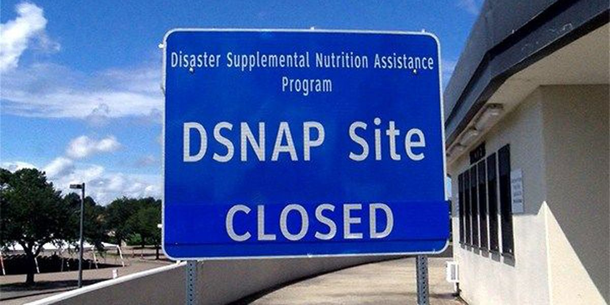 DCFS provides almost $80M in disaster food assistance in 21 parishes