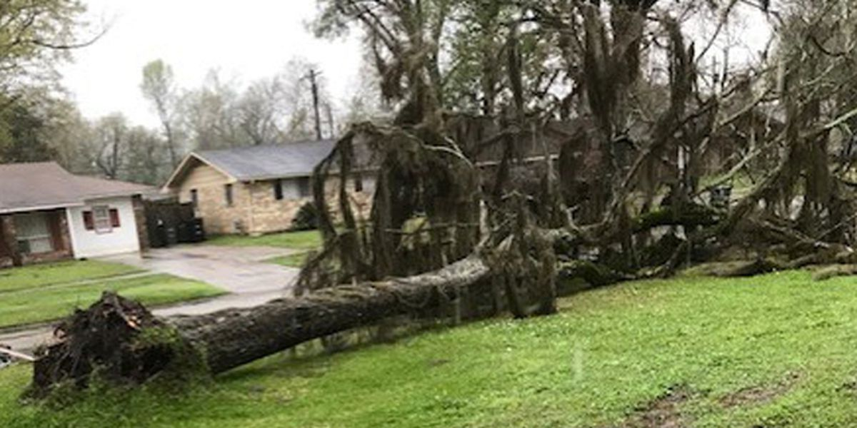 Weather causes power outages, minor damage to some homes as storms move through Baton Rouge area