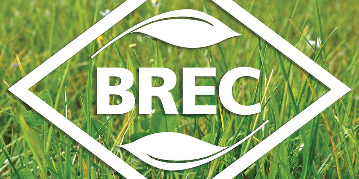 More than parks and rec; BREC takes physical activity 'On the Geaux'