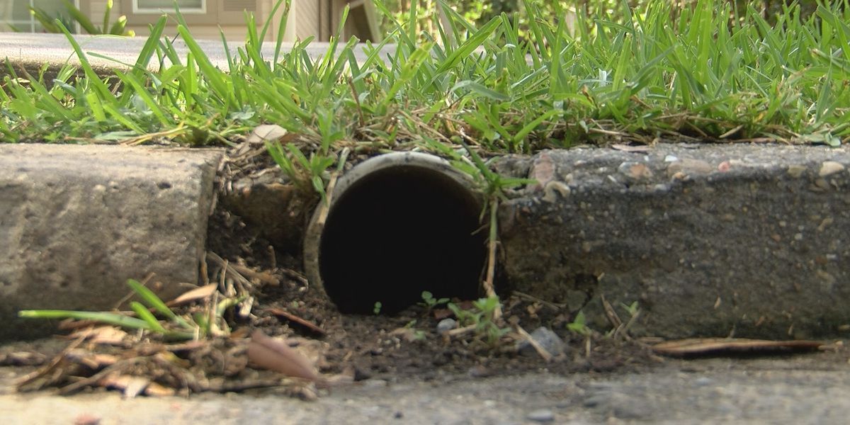 Residents in BR's Garden District fed up with drainage problems