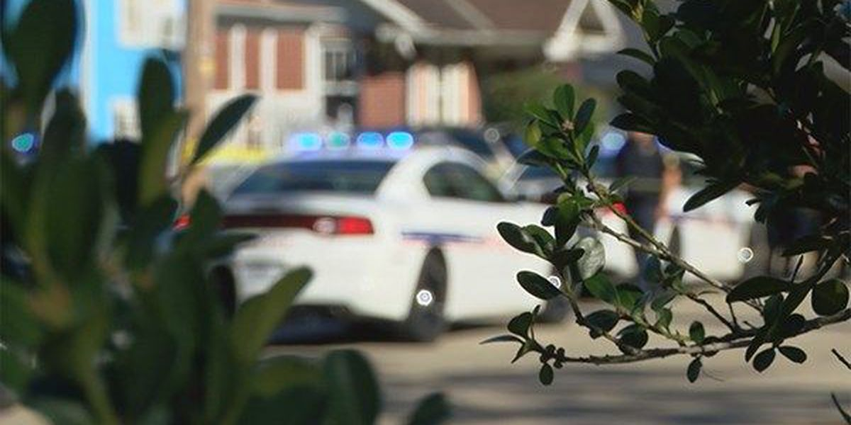 Baton Rouge lawmaker proposes tougher police training requirements
