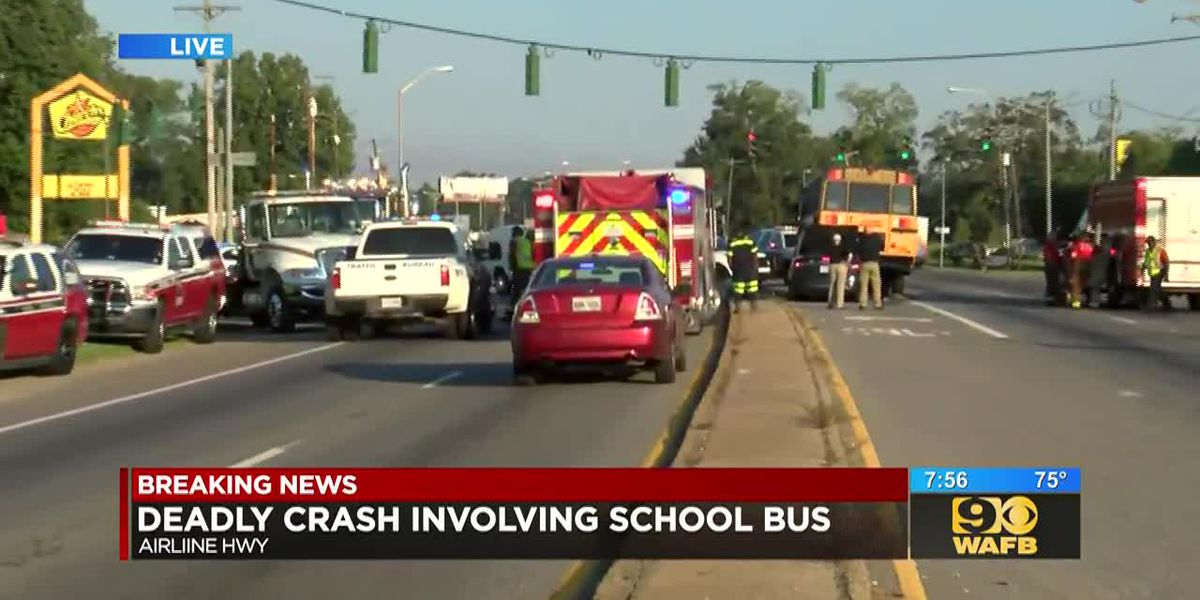 Crash involving school bus and vehicle leaves 1 dead