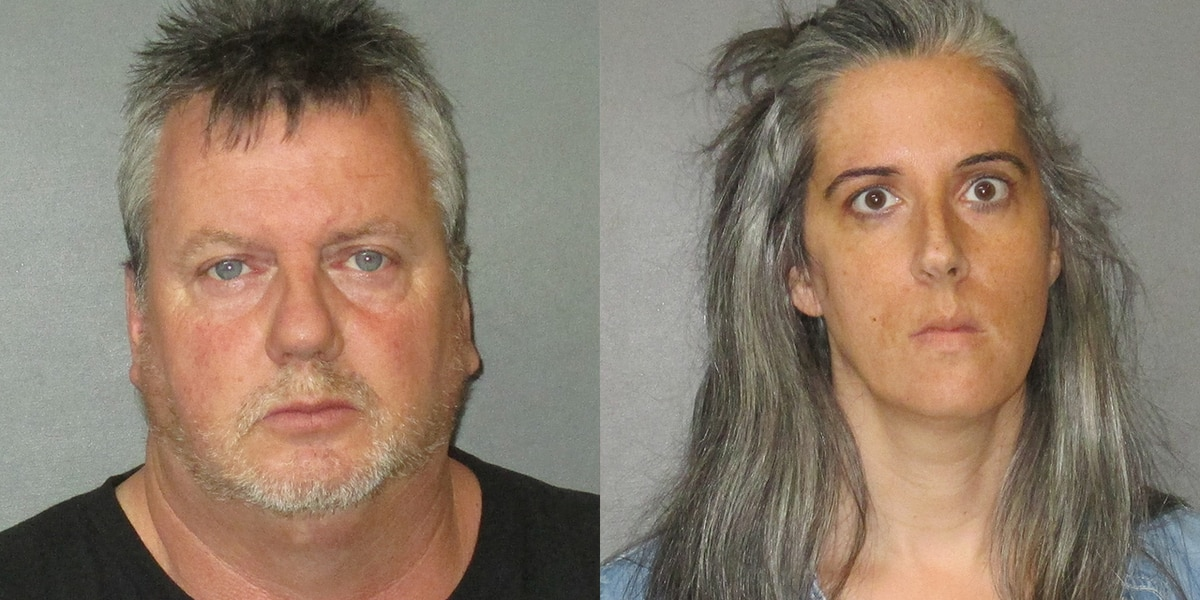 Twenty-four pounds of marijuana mailed to La. leads deputies to alleged drug distributors