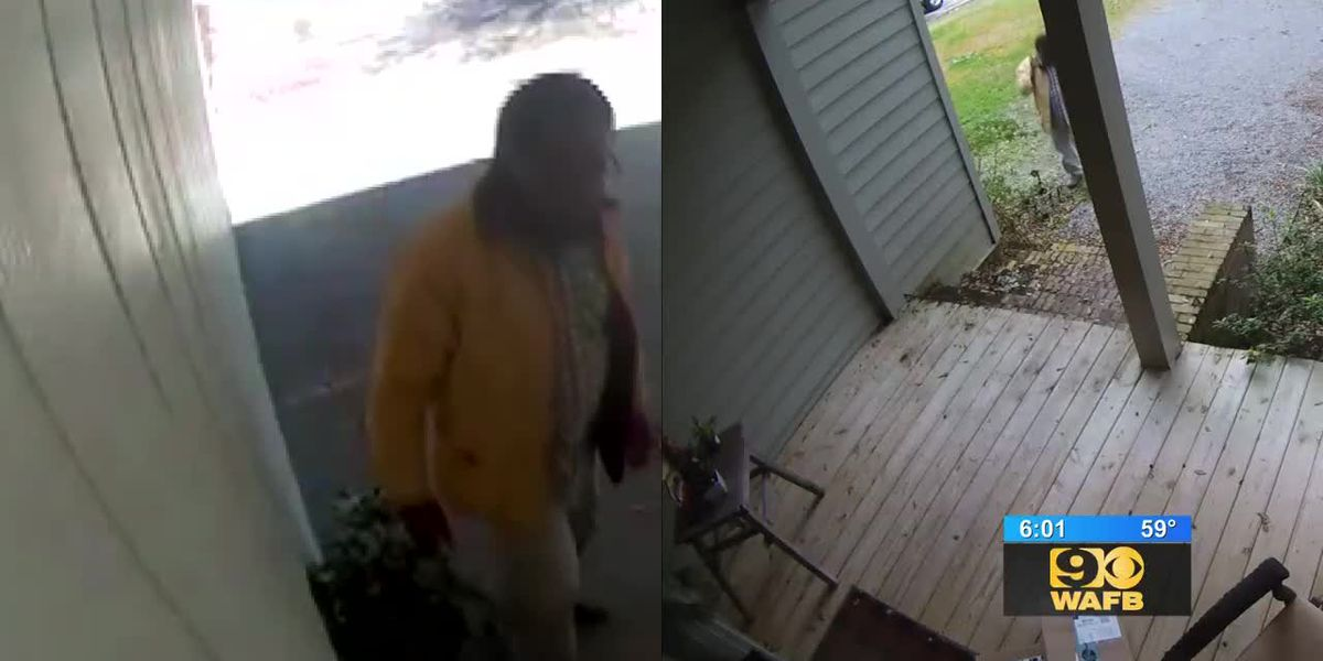 Porch thieves