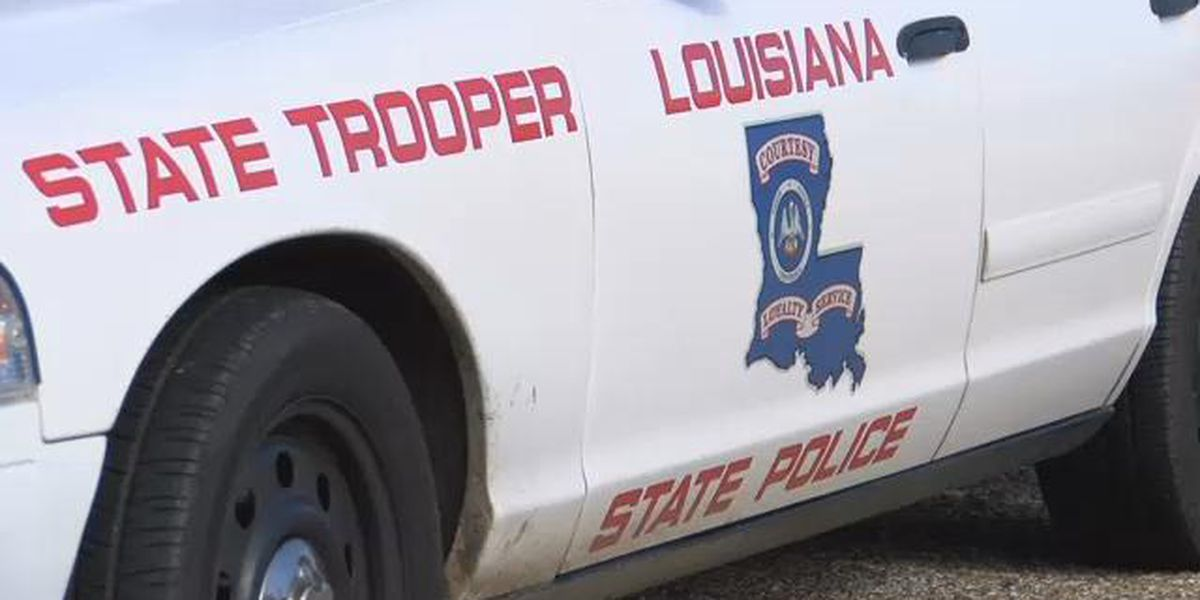 Denham Springs man dies in head-on crash on Walker Road North