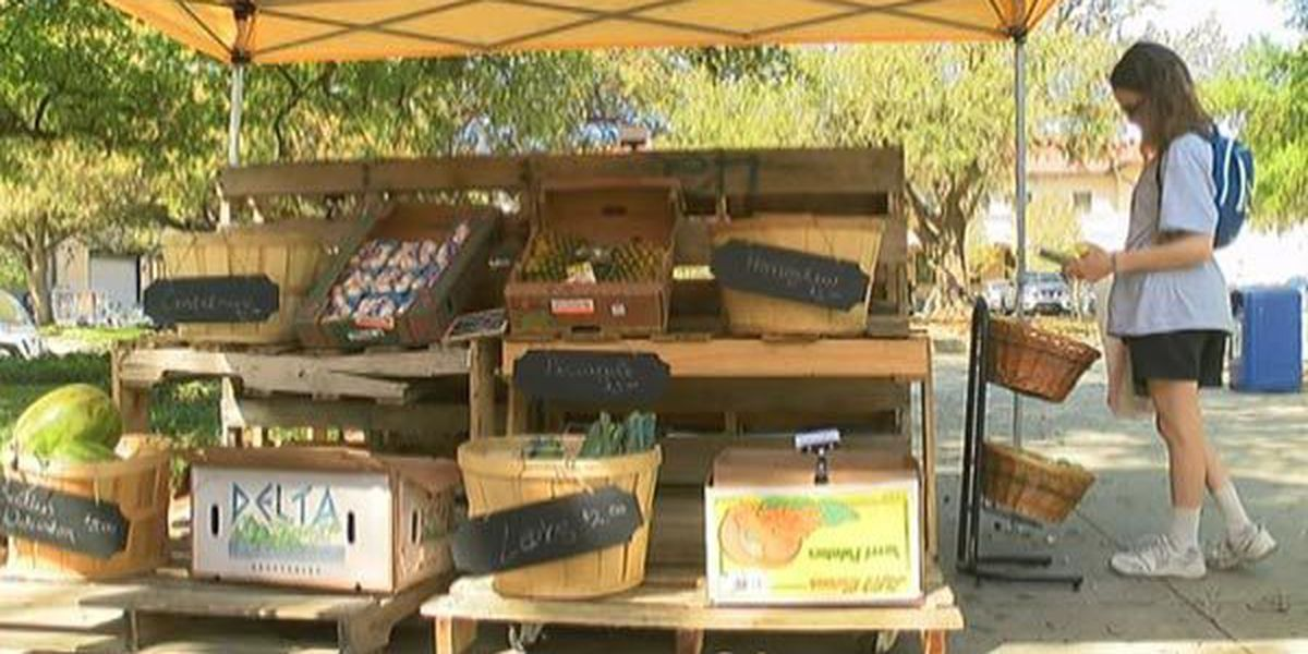 LSU Dining Farmers Market returns to campus