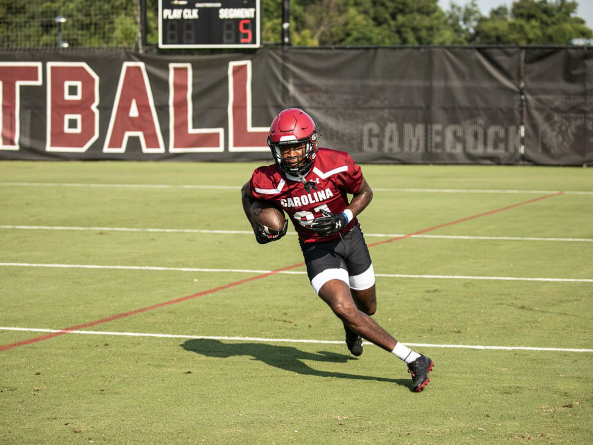 Gamecocks' WR Brooks finally cleared by NCAA to play this season