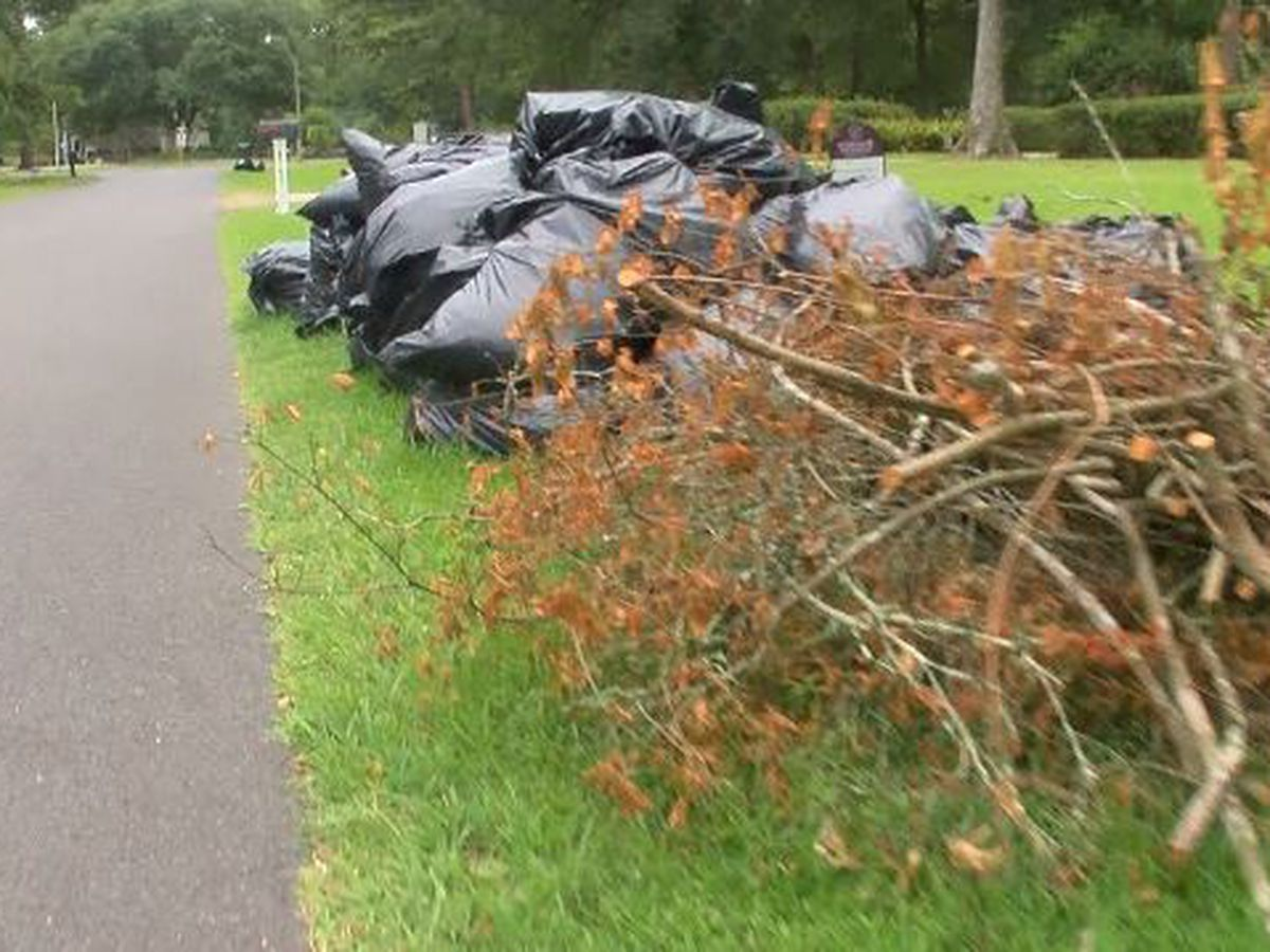 Central residents frustrated with slow debris removal after Barry; mayor working toward solution