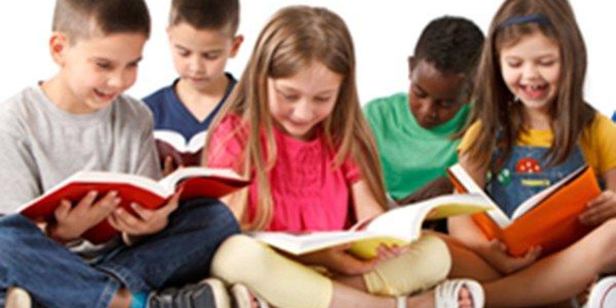 Louisiana PTA launches online book fair