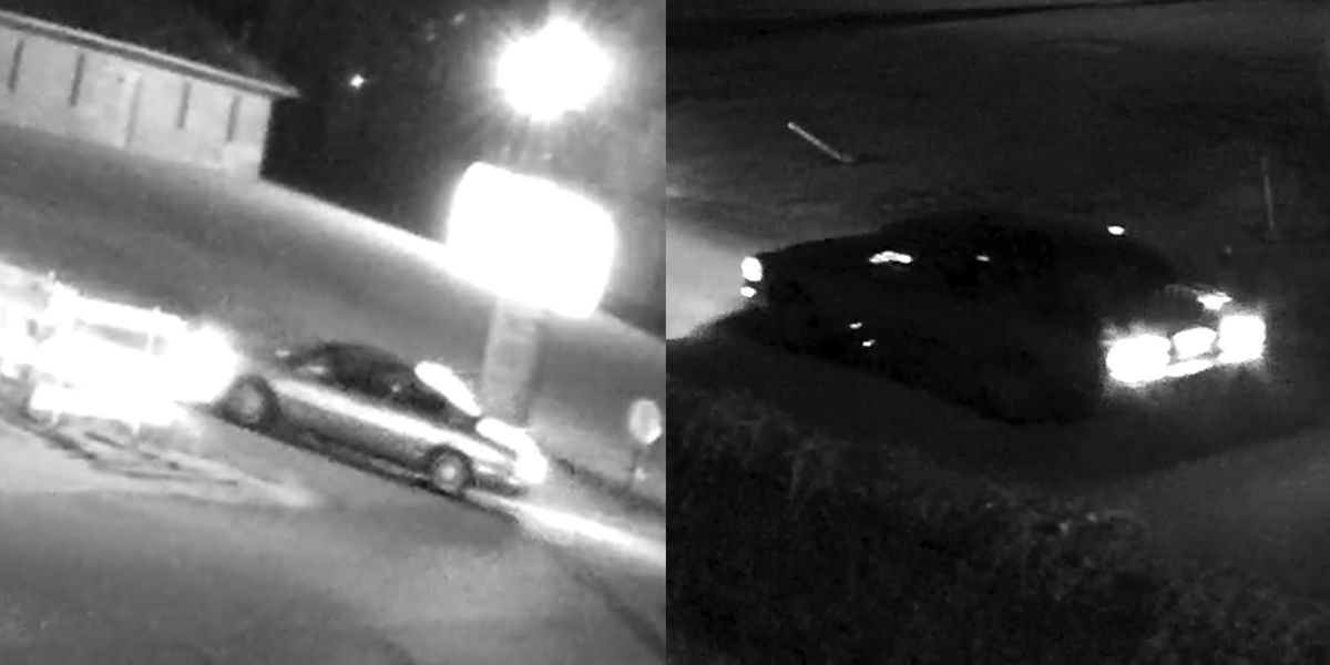 Police searching for driver of car that struck person walking dog