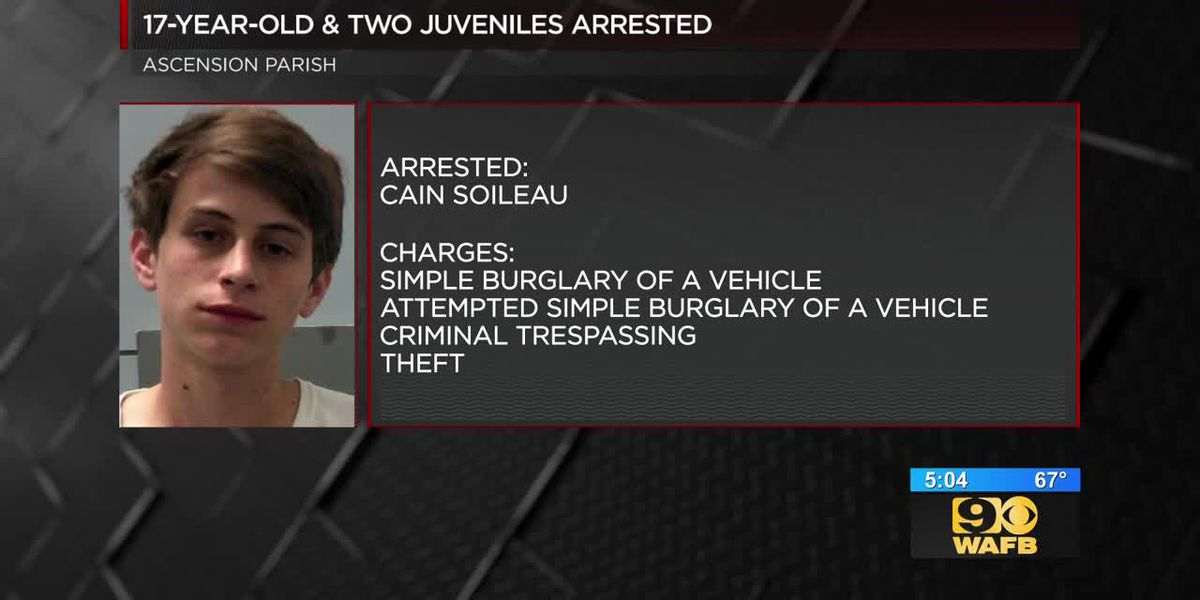 17-year-old and 2 juveniles arrested