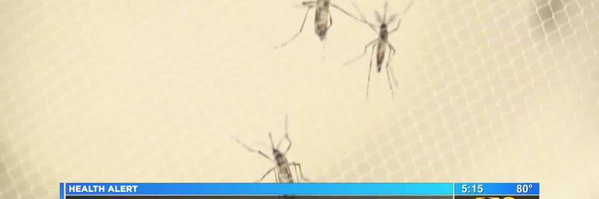 Mosquitoes test positive for West Nile Virus in WBR