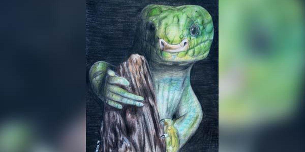 BREC's BR Zoo announces Art Gone Wild winners