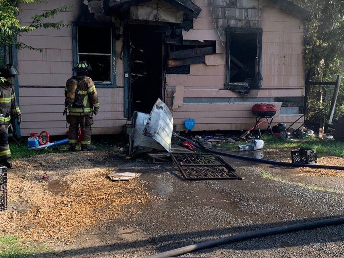 Fire that killed family dog ruled arson, investigators say