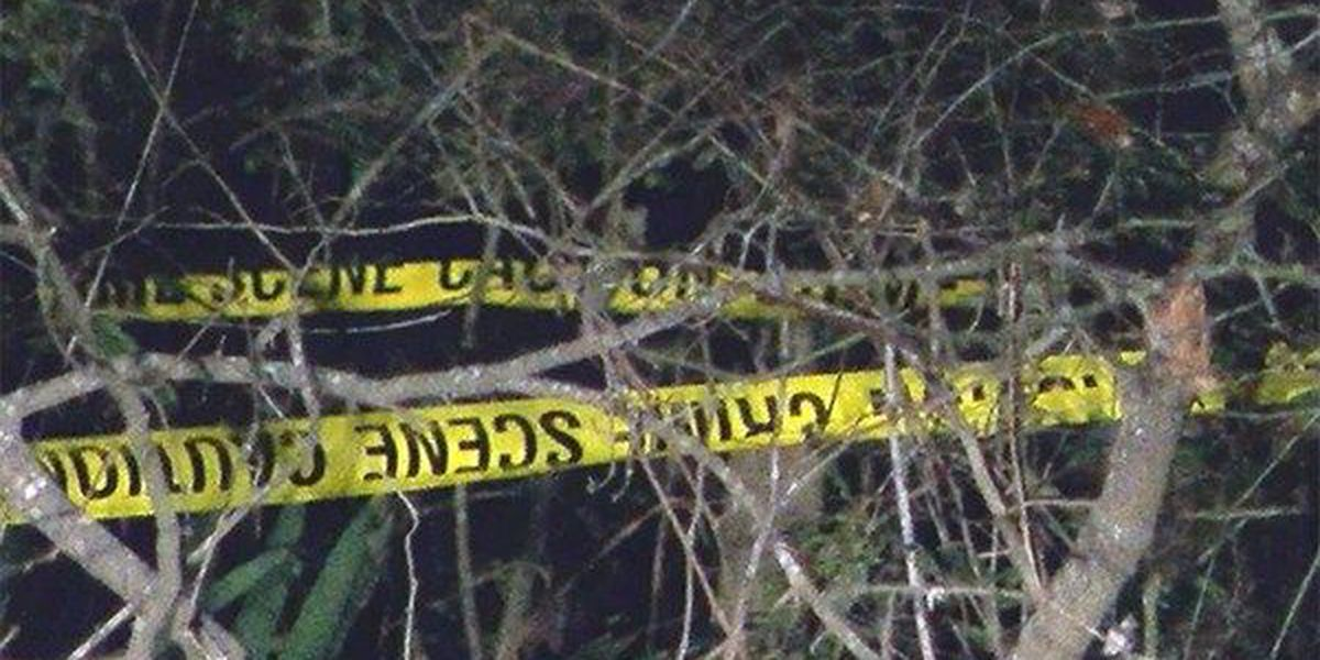 Foul play not suspected for human remains found in Prairieville