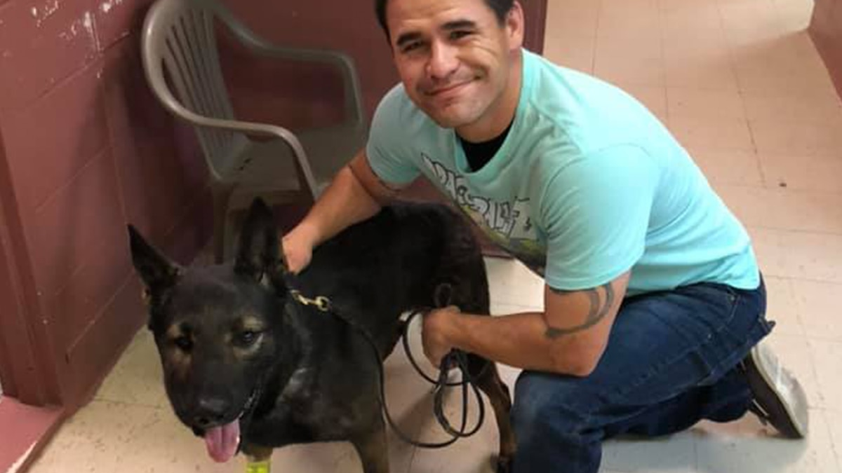 Louisiana K-9 recovering after rattlesnake bite; draws in hudreds of prayers