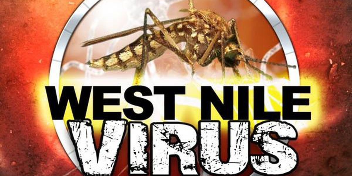 Number of West Nile cases continues to grow