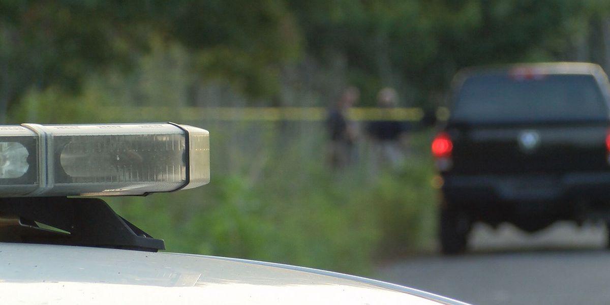 East Baton Rouge Parish ends 2018 with 86 homicides