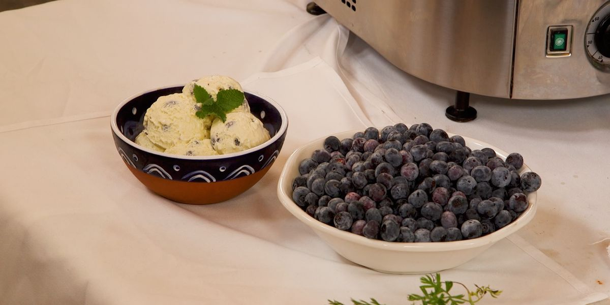 Blueberry Golden 25 Vanilla Ice Cream