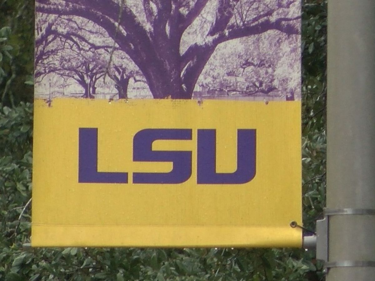 LSU looks for feedback to improve transportation on campus