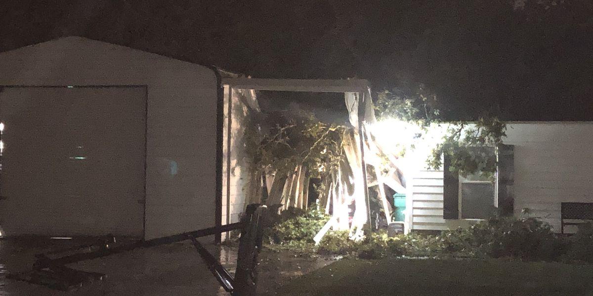 Tree falls on man in Watson during Hurricane Delta