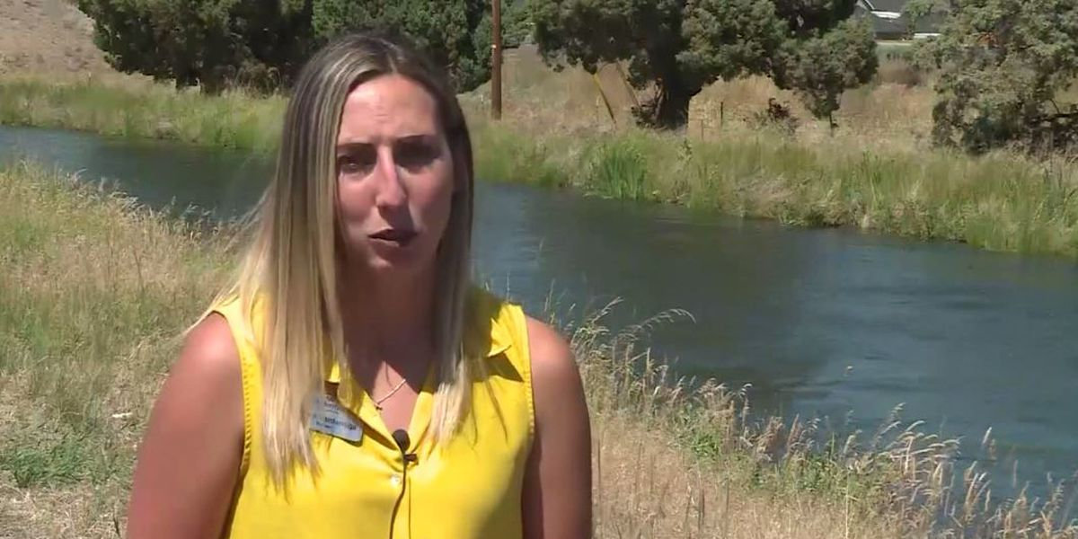 Woman runs across 4 lanes of traffic, jumps in canal to rescue drowning Ore. toddler