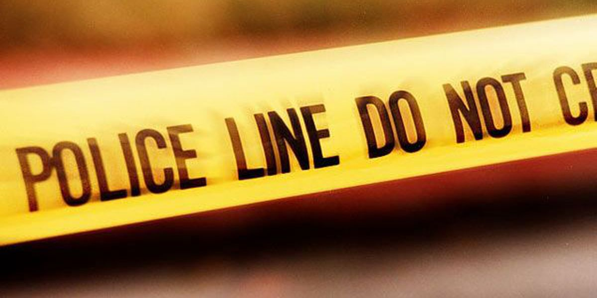 Police investigate homicide after woman found dead under house