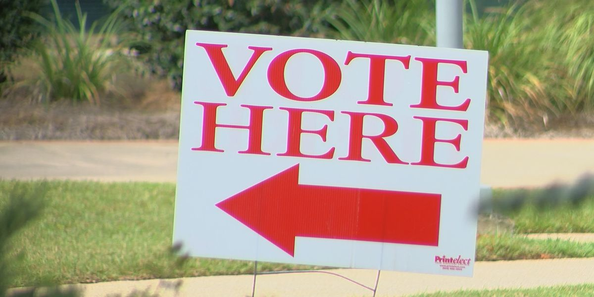 LAWSUIT: Expand mail-in voting; make in-person voting 'safer' in La. during pandemic