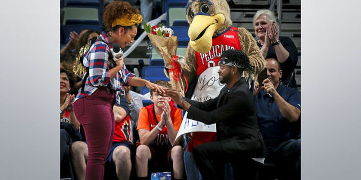 Pierre the Pelican helps announcer's boyfriend with Kiss Cam proposal
