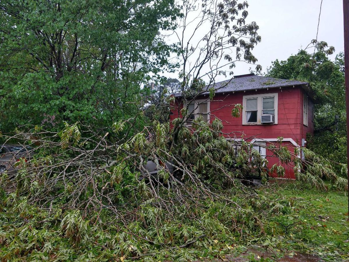 Storm damage reported throughout the ArkLaTex