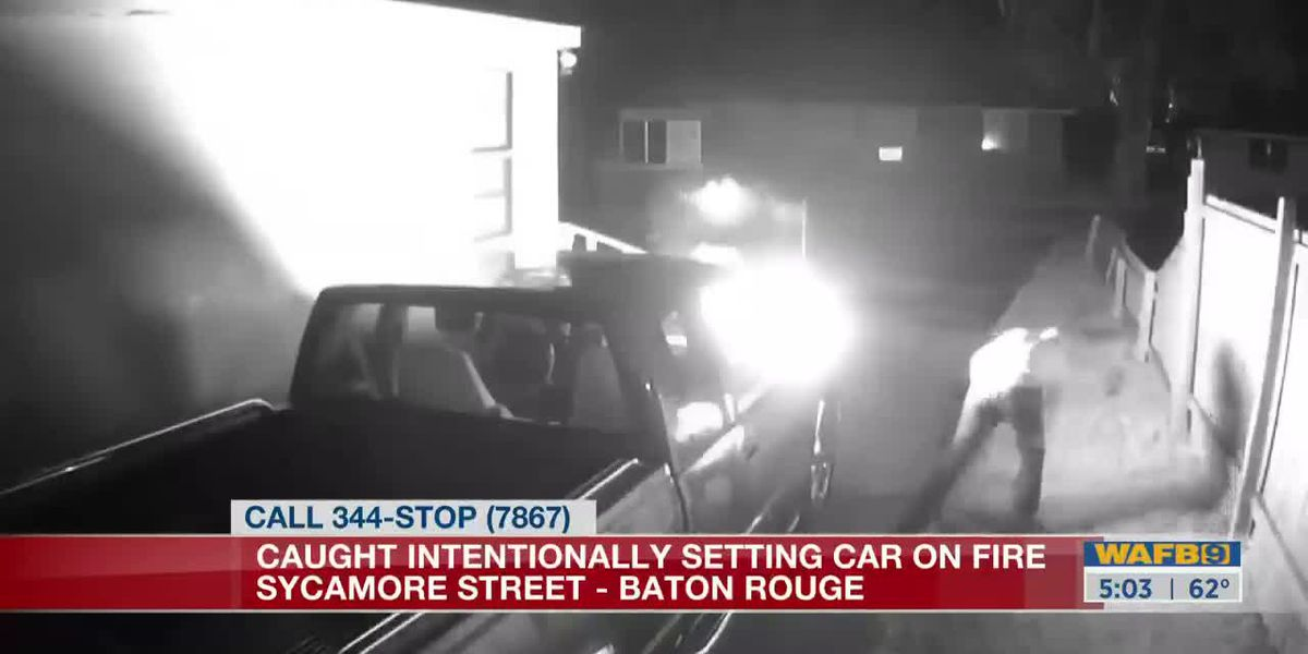 Police searching for suspect caught on camera intentionally setting vehicle on fire on Sycamore Street