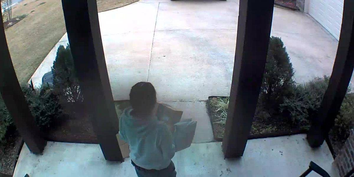 APSO: Alleged Amazon Package Thief
