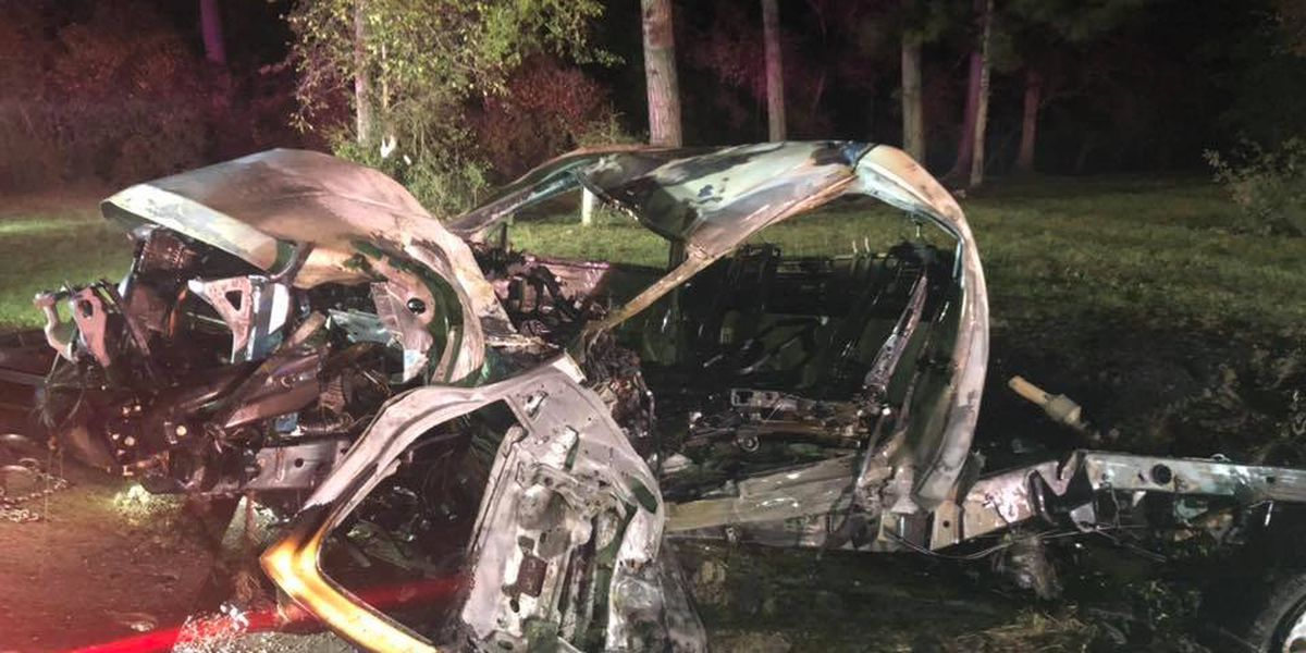 Truck strikes tree, bursts into flames; 2 seriously injured