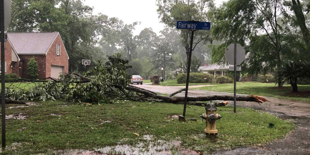 PHOTOS: Storm damage around Louisiana