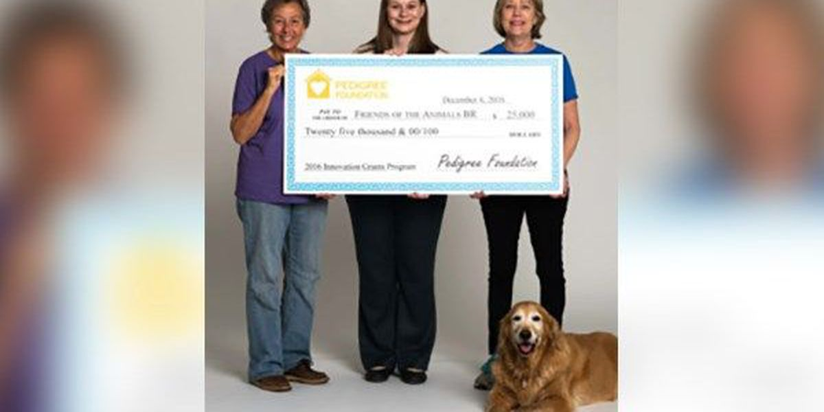 Non-profit that helps dogs receives grant