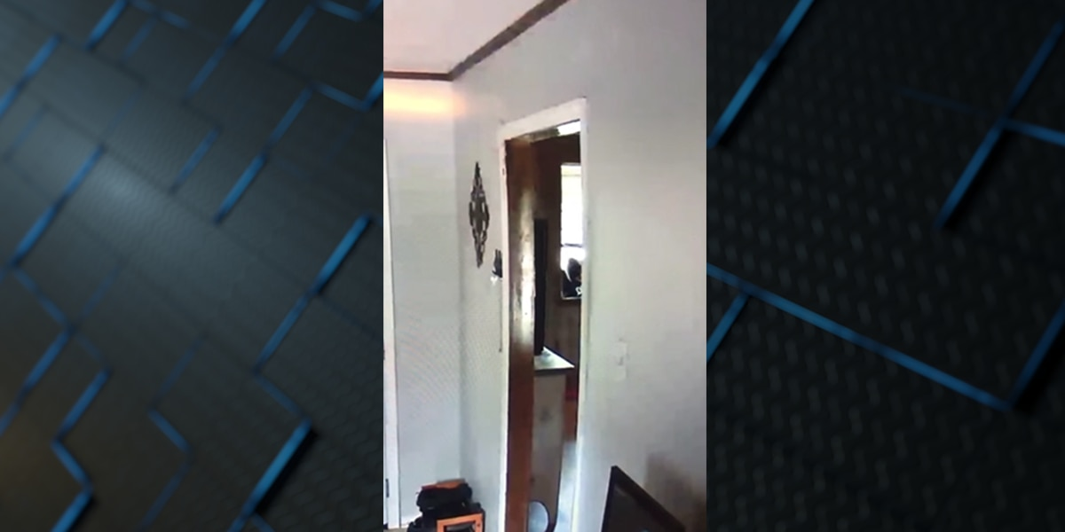 Video appears to show bold theft at Central home; owner asking for help
