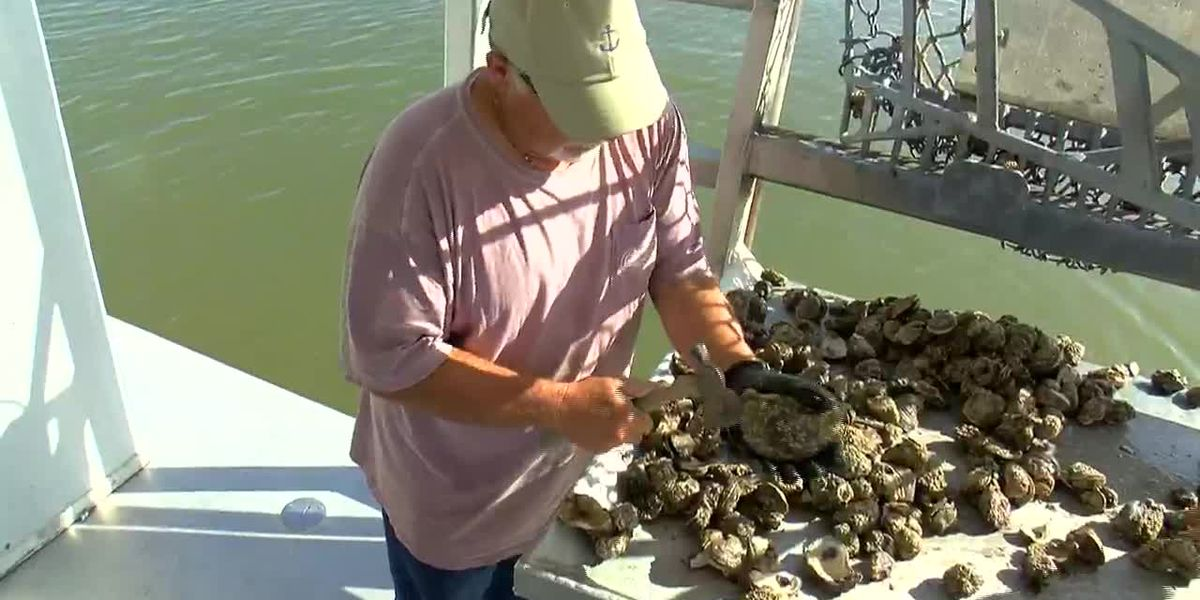 NOAA awards La. seafood industry assistance following opening of Bonnet Carre Spillway