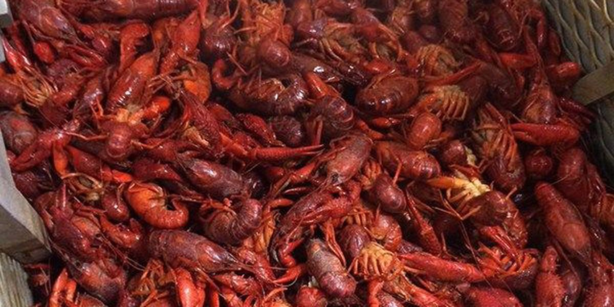Businesses get ready for Good Friday crawfish rush