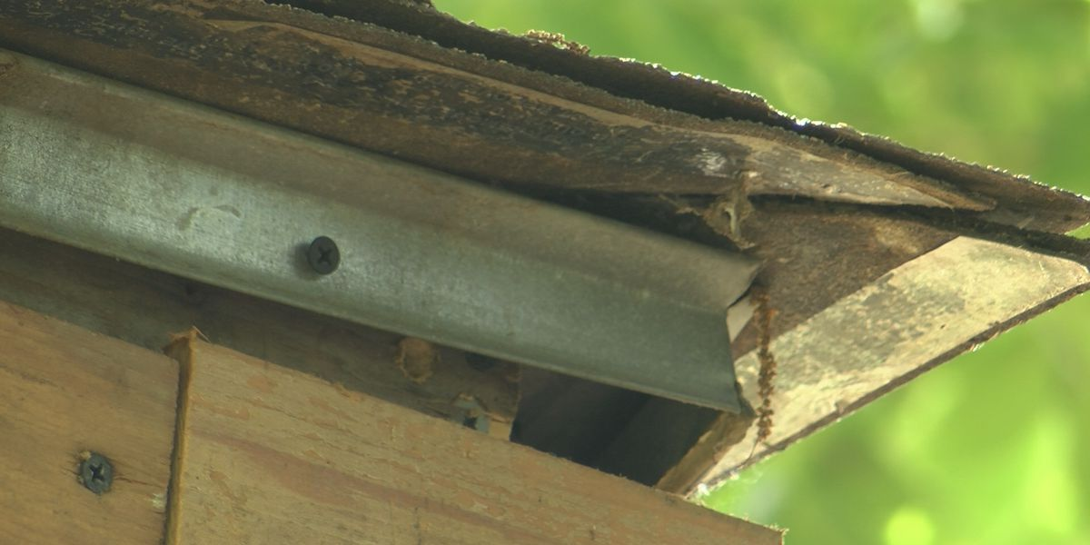 New program promises to repair roofs of qualified homeowners
