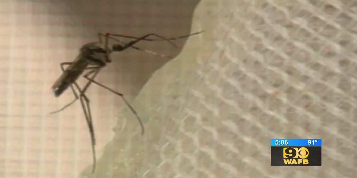 HEALTH ALERT: First reports of people getting sick from West Nile virus